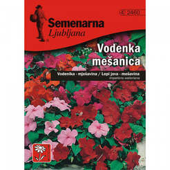Семена за цветя Воденка смес Impatiens Waleriana-Mix