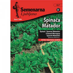 Семена за зеленчуци Спанак Матадор Spinach Matador